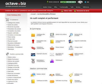 Découvrez comment Octave.biz intègre le Rich media à sa stratégie   Rich Media & e-Commerce   Scoop.it