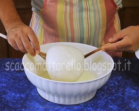 Mozzarelle....nodini e fior di latte... | Alimentazione Naturale, EcoRicette Veg e Vegan | Scoop.it