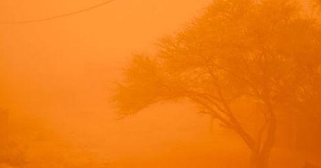 Au Burkina Faso, les résistants au réchauffement climatique | Développement durable et efficacité énergétique | Scoop.it