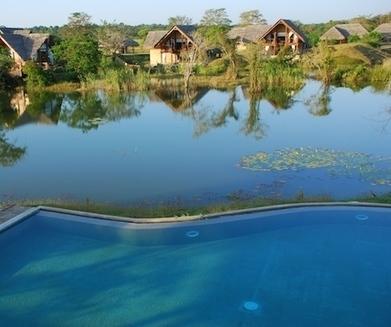Jetwing Vil Uyana - a Vegan Food Quest vegan hotel review | Luxury Hotels Sri Lanka | Scoop.it