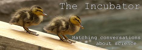 The Incubator | science matters ky | Scoop.it