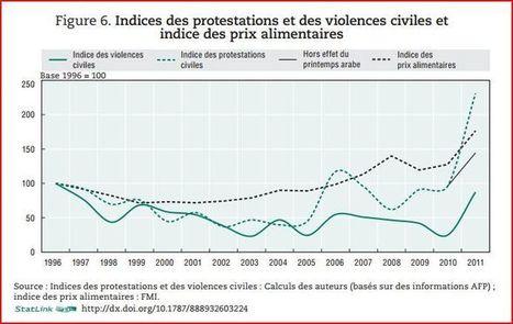 L'Afrique au défi de la démocratie?   International aid trends from a Belgian perspective   Scoop.it