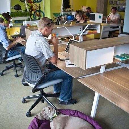 When to buy office furniture? A few tips for startups. | Office Environments Of The Future | Scoop.it