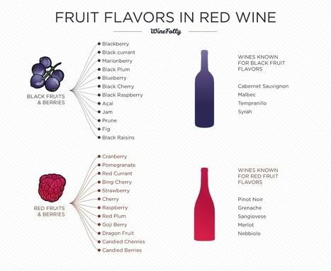 Identifying Flavors in Wine | Le Marche - land of Food and Wine! | Scoop.it