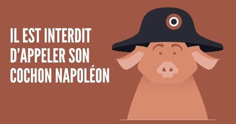 Top 10 des lois les plus insolites encore en vigueur en France | Remue-méninges FLE | Scoop.it