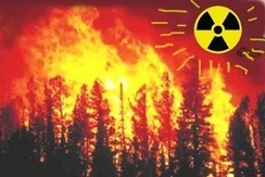 Increased ionising radiation in Chernobyl area, following wildfires | GarryRogers NatCon News | Scoop.it