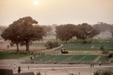 FAO -News Article:Building the African green wall, piece by piece   Unit 4 geog desertification   Scoop.it