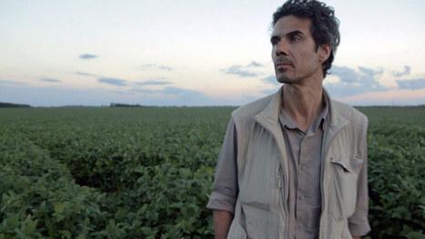 OGM : quand Paul Moreira empoisonne la vie de Monsanto | Des 4 coins du monde | Scoop.it