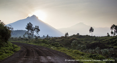All Activists: Keep Oil Exploration Out of Virunga National Park | World Wildlife Fund | World Without Borders | Scoop.it