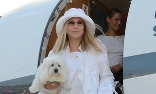 Barbra Streisand's dog tours too - The Jet Set Pets | Barbra Streisand | Scoop.it