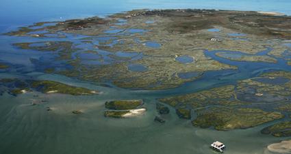Le Bassin d'Arcachon : un véritable monde à part | Revue de Web par ClC | Scoop.it