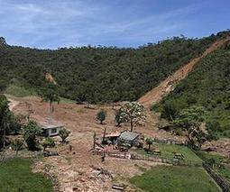 Brazil landslides claim at least 24 lives   Dogs lost and found   Scoop.it