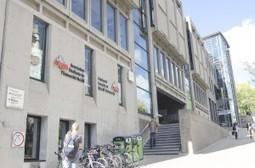 CANADA McGill Tribune: Brown professor David Egilman questions asbestos research | Asbestos and Mesothelioma World News | Scoop.it