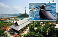 Philippine court stops re-exporting of dolphins to Singapore | Earth Island Institute Philippines | Scoop.it