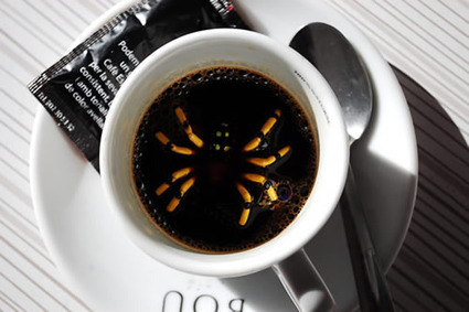 Ugh! There's something in my coffee! : Tech ELT Blog | Using Educational Technology for Adult ELT | Scoop.it