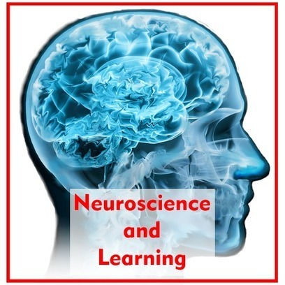 Will at Work Learning: Brain Based Learning and Neuroscience – What the Research Says! | Learning & Mind & Brain | Scoop.it