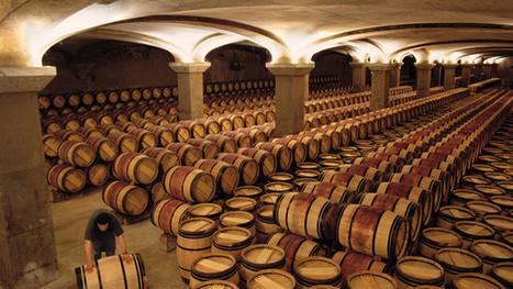 Best value Bordeaux wines 2004 (by Jancis Robinson) | Vitabella Wine Daily Gossip | Scoop.it