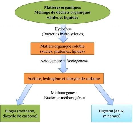 » La Biométhanisation | Environnement | Scoop.it
