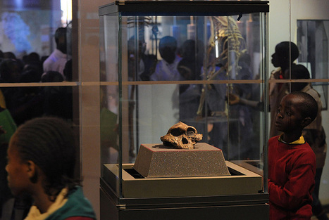 National Museums of Kenya: Ancient past challenges modern teaching in 'cradle of mankind' | Art Daily | Kiosque du monde : Afrique | Scoop.it
