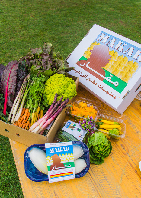 9 Places to Get Locally-Grown Organic Foods in Egypt | Eat Local for life balance and longevity | Scoop.it