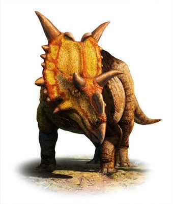 Un dinosaure dans le tiroir   Aux origines   Scoop.it