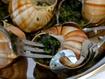 Escargot Stuffed Mushrooms Recipe | Heliculture | Scoop.it