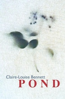 Read Extract from Pond by Claire-Louise Bennett | The Irish Literary Times | Scoop.it