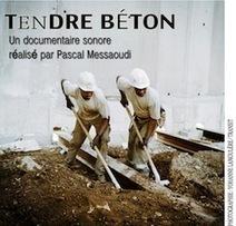 Tendre béton | Radio Grenouille | DESARTSONNANTS - CRÉATION SONORE ET ENVIRONNEMENT - ENVIRONMENTAL SOUND ART - PAYSAGES ET ECOLOGIE SONORE | Scoop.it