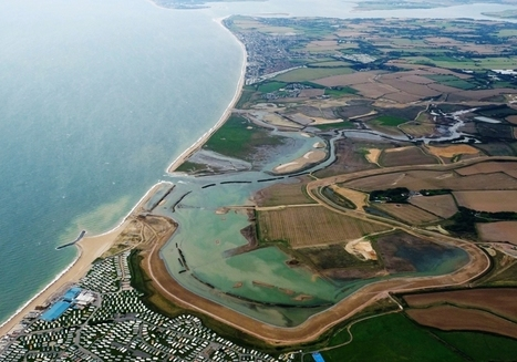 What are natural flood defences and do they work? | Ufficio RIA 2.0 | Scoop.it