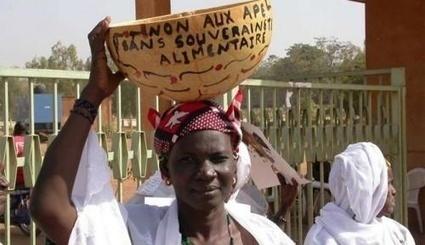 L'Europe impose à l'Afrique un traité pire que le TAFTA | Questions de développement ... | Scoop.it