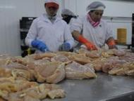 La dieta nacional - Diario El País | Tecnología de los Productos Avícolas | Scoop.it