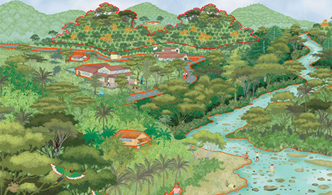 Virtual SmartFarm   Rainforest Alliance   Sustainable Food and Fibre Concepts for Students   Scoop.it