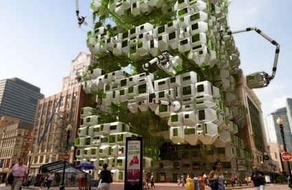 Algae Biofuel Moves to the Big City: Project Aims to Grow Algae On a High-Rise - Gas 2   Aspects 2 & 3   Scoop.it