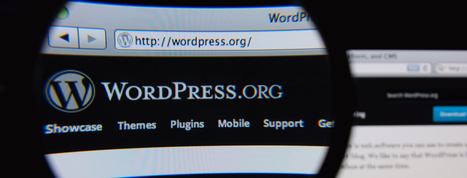 If You Use WordPress, You Need to Know About This Button | Business in a Social Media World | Scoop.it