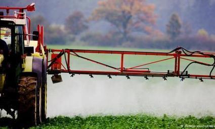 El glifosato pierde fuerza en Europa   Agroindustria Sostenible   Scoop.it