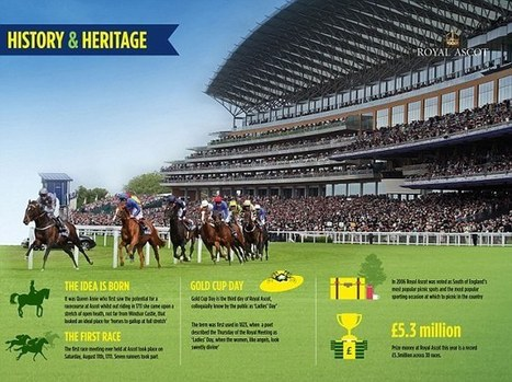Royal Ascot 2014: The biggest meeting in the Flat calendar is here | Horse Racing News | Scoop.it