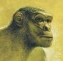 À l'Ouest d'Homo sapiens | Aux origines | Scoop.it
