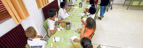 La crisis entra en los comedores escolares | Dietitians as a key professional to improve health | Scoop.it