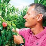 Pesticides dans les fruits – Les difficultés du passage au bio - Que Choisir (abonnés) | Les colocs du jardin | Scoop.it