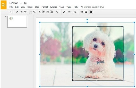 Google Drive Blog: Edit images right in Google Slides and Drawings | The Google Scoop | Scoop.it