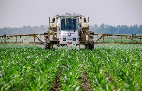What Do We Really Know About Roundup Weed Killer? | Sustain Our Earth | Scoop.it