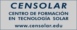 Cardos para producir electricidad - Energías Renovables, el periodismo de las energías limpias.   Cardo   Scoop.it