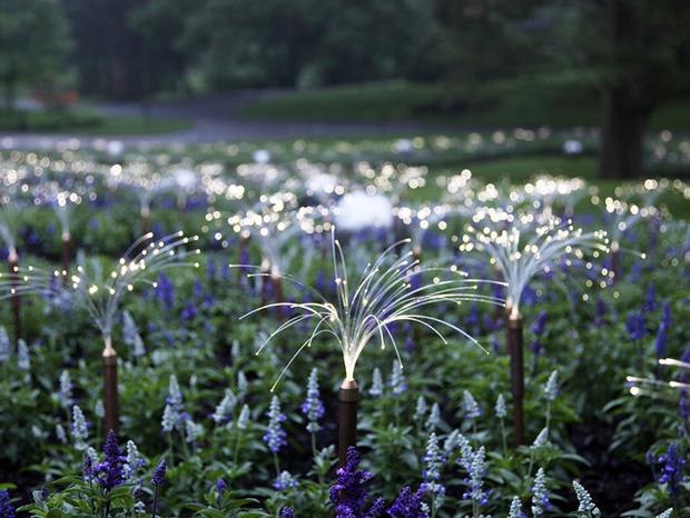Il est temps de vous faire rêver… Un jardin illuminé comme vous n'en avez jamais vu !   La Revue de Technitoit   Scoop.it