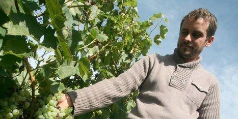 « On possède un véritable trésor » : Les Étapes du Cognac | Demeure d'hôtes de charme en Charente | Scoop.it