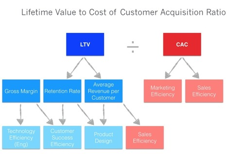 Unpacking the Deep Diagnostic Value of LTV/CAC for SaaS Startups | Fundraising | Scoop.it