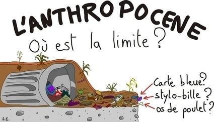 L'Anthropocène : une catastrophe ? | EntomoNews | Scoop.it