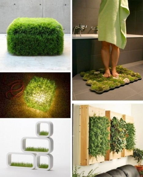Green concepts in projecting the interior  Minimalisti.com   Interior Design Trends & Tips   Scoop.it