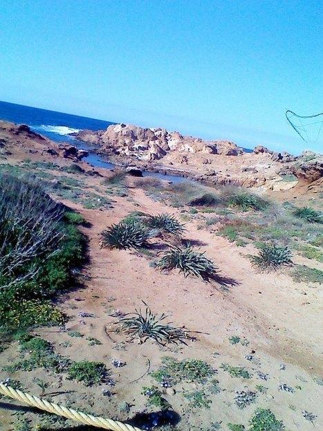 Rutas por Menorca. Excursiones  Running | Viajes y tiempo libre | Scoop.it