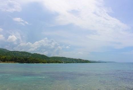 "Economic ""Clusters"" in Jamaica? - Caribbean Journal | The Montegonian | Scoop.it"