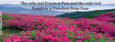Facebook Cover Image - Freedom and Fear - TheQuotes.Net | Facebook Cover Photos | Scoop.it
